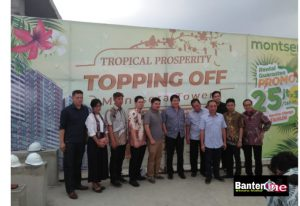 Topping Off Monstsera by Tree Park City Apartement
